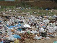 Plastic-bags-jj-001