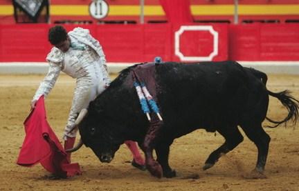 The_matador