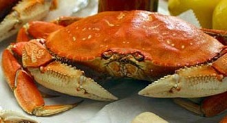 Dungeness-crab-336x280
